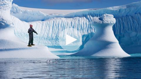 Real News 1 - Antarctica